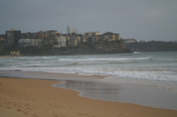 Manly Beach near hotel