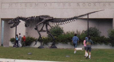 Tyrannosaurus Rex in front of the Museum of the Rockies